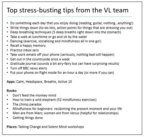 Top stress-busting tips from the Vertical Leap wellbeing session