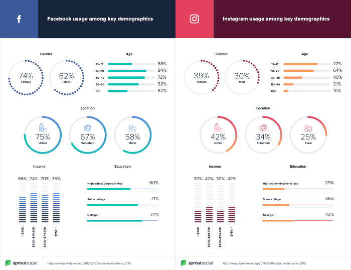Facebook usage by demographic compared to Instagram