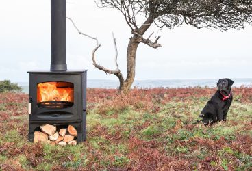 View of log burner and dog in a field